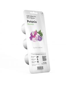PIANTA PETUNIA CLICK&GROW